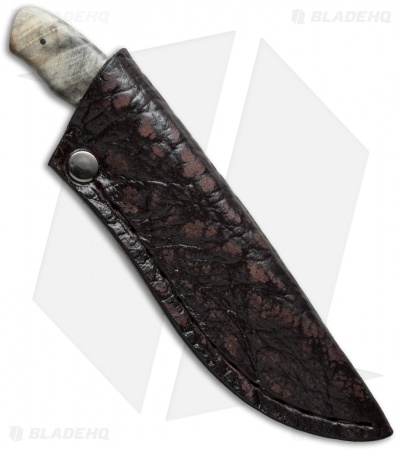 "Arno Bernard Squirrel Fixed Blade Knife Maple Burl (2.625"" Satin)"