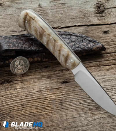 "Arno Bernard Knives Jackal Fixed Blade Knife Sheep Horn (3"" Satin)"