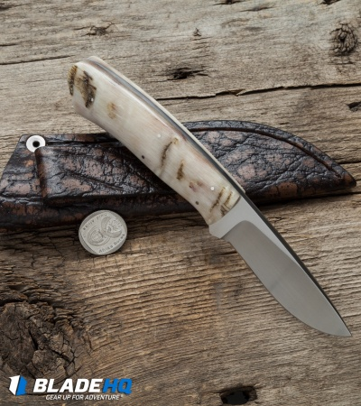 "Arno Bernard Knives Wolverine Knife Sheep Horn (3.125"" Satin) 4604"