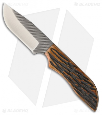 "Anza Knives MC-10 AJB Fixed Blade Knife Amber Jigged Bone (3.50"" Satin)"