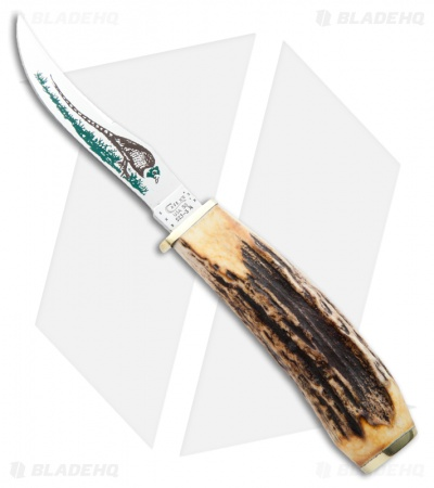"Case Pheasant Blade Stag Hunter Knife 3.625"" Genuine Stag (523-3 1/4 SS) 00341"