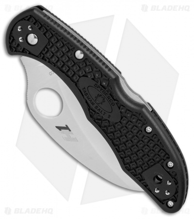 "Spyderco Tasman Salt 2 Lock Back Knife Black FRN (2.8"" Satin Full Serr) C106SBK2"