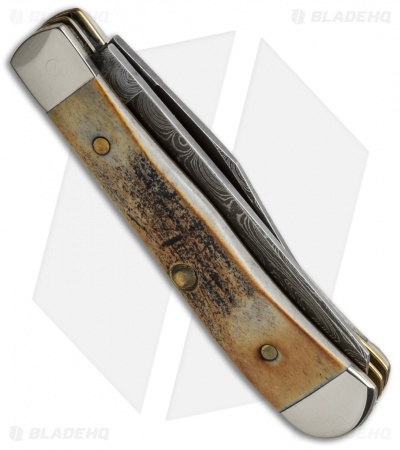 "Case Tiny Trapper Damascus Knife 2.5"" Stag (52154 DAM) 154"