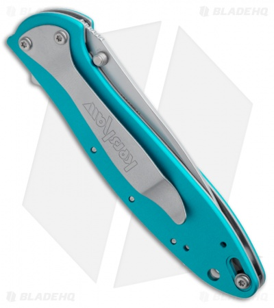"Kershaw Leek Assisted Opening Knife Teal (3"" Bead Blast) 1660TEAL"