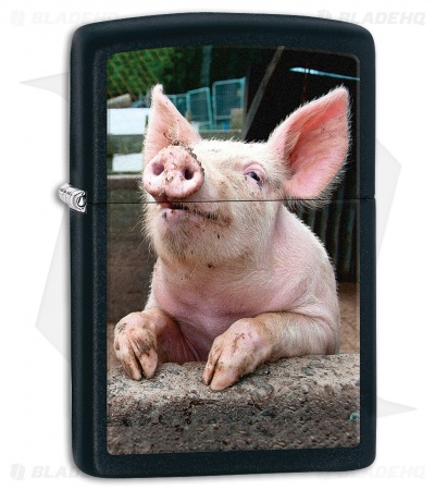 Zippo Lighter Pig Dreaming (Black Matte) 11982