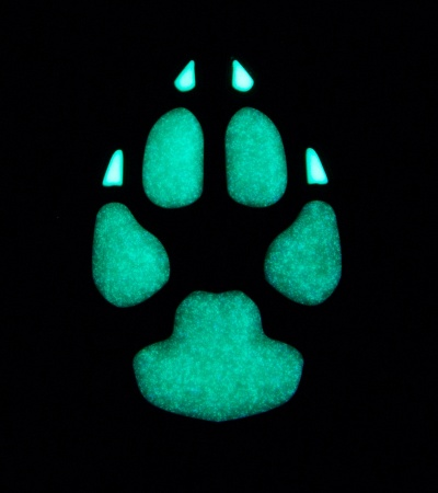"Maxpedition 0.75"" x 1"" Dog Track PVC Patch (Glow)"