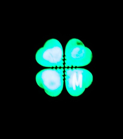 "Maxpedition 0.94"" x 0.94"" Mini Lucky Shot Clover Micropatch PVC (Glow)"